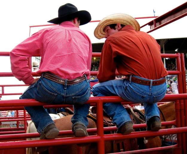 It's rodeo time at the Calgary Stampede