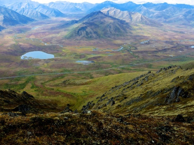 Spectacular fall colours in the Yukon's Tombstone Territorial Park