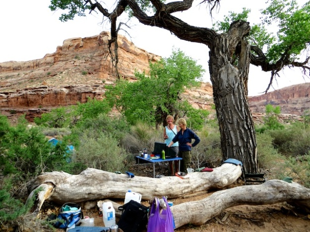 Pretty luxurious backcountry camping with a table and propane stove