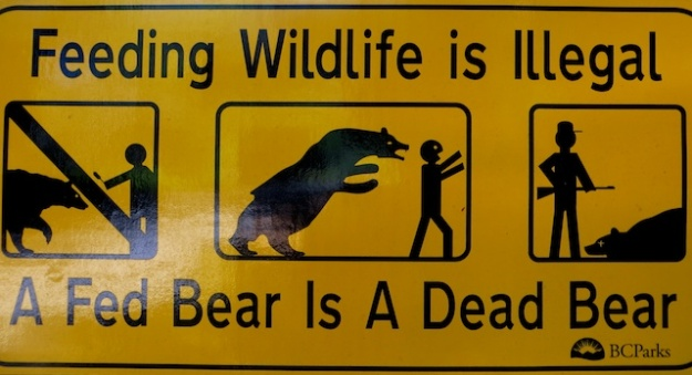 Bear sign near Sooke, B.C.