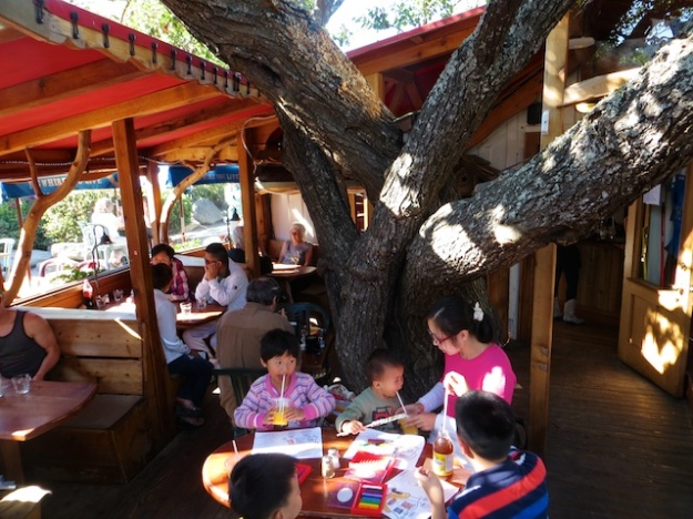 The tables at Tree House Cafe are nestled beneath the branches of this huge tree