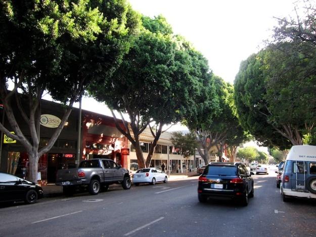 Lovely, tree-lined Higuera Street in San Luis, Obispo, California