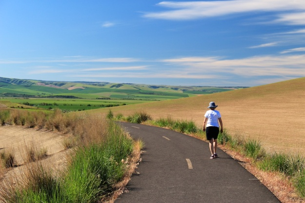 The Walla Walla Valley is in the midst of gorgeous farm country