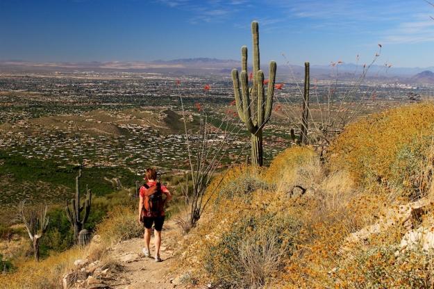 Tucson 2017 170