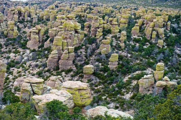 Southeast Arizona 143
