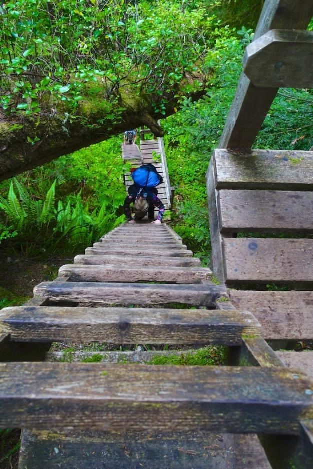 North Coast Trail 164